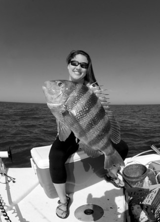 Captain Jim Dodge Sheepshead on the Reef