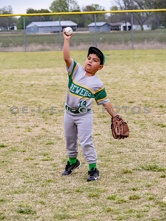 20190403  T BALL Taylor  Brewers
