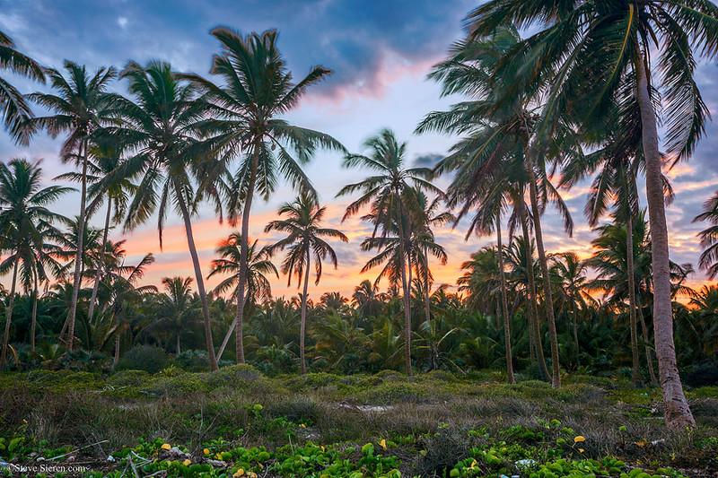 Dominican Republic Playa de Natura Park