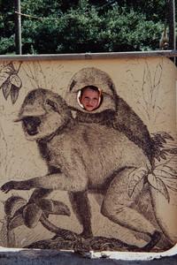 1990 Barnet Zoo - Syracuse