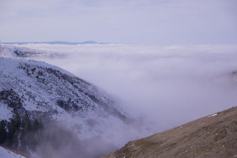 Cabbage Summit Overlook