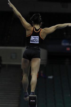 2011 NCAA Women's Gymnastics Championships