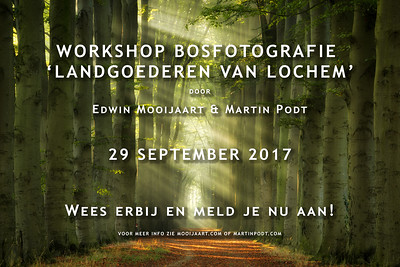 2017-09-29 Workshop bosfotografie (Dutch)
