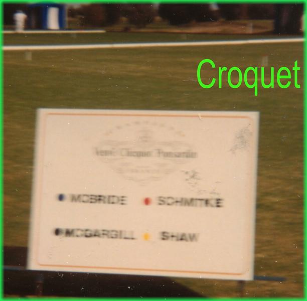 456 croquet.JPG