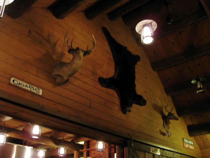 There are dead animals on the walls.