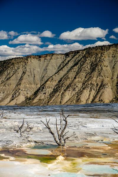 Mammoth-Hot-Springs-Yellowstone-Mroczek-2835.jpg