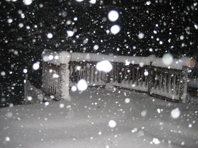 2010  February ~ Snow in Harmony