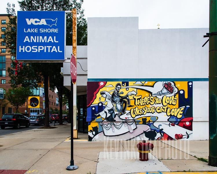 VCA Lake Shore Animal Hospital