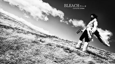 Bleach Shoot 2012