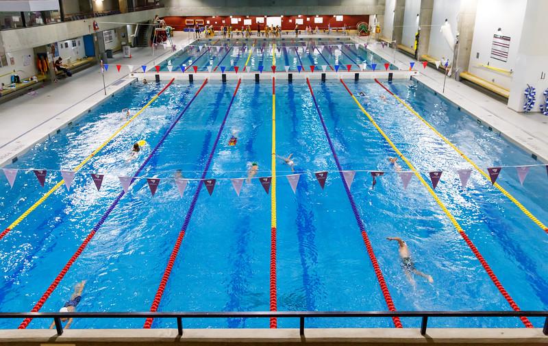 Swimming-5.jpg