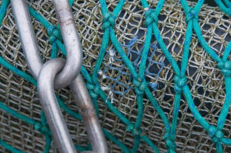 ropes_2.jpg