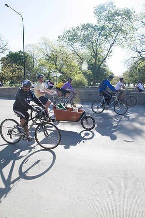 Lakeshore Drive: Bike Trek