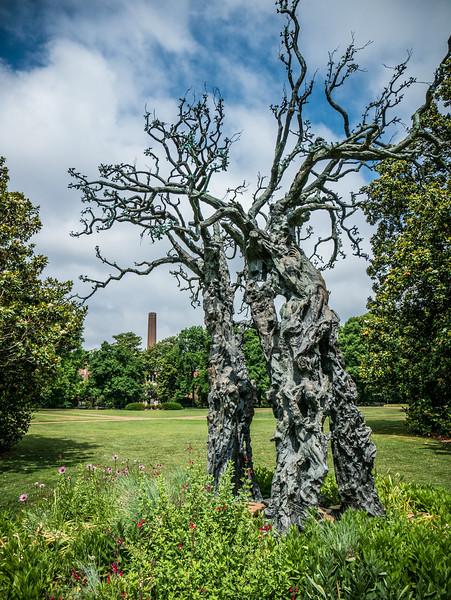 Walking around Vanderbilt Campus-20140603-10_31_05-Rajnish Gupta.jpg