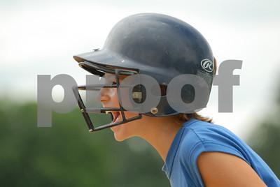 Wallkill Area Little League
