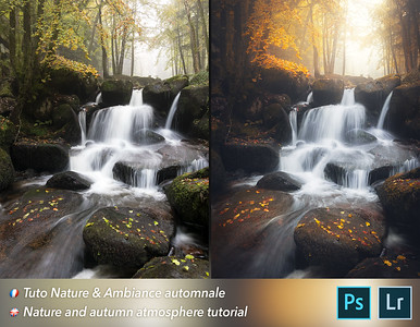 Nature & autumn atmosphere tutorial