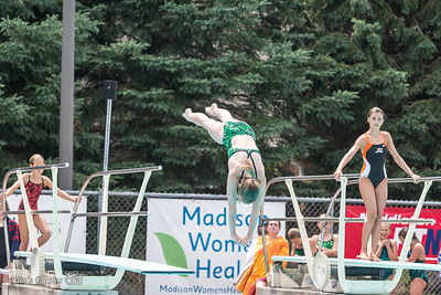 Swim - 2014 All-City Dive 11-12 Girls