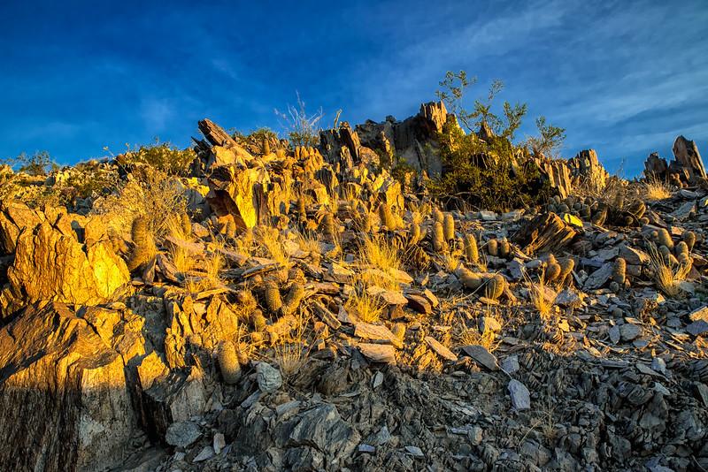 Squaw Peak Arizona