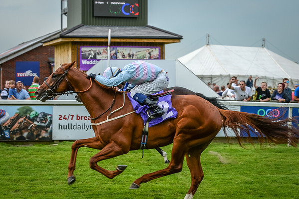 The Racing Again Next Tuesday Median Auction Maiden Stakes
