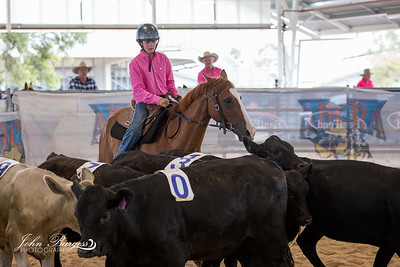 ABCRA National Finals Ranch Sorting - Beginner #10 Youth Ranch Hand