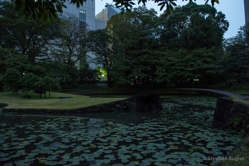 Tokyo One-8438.jpg