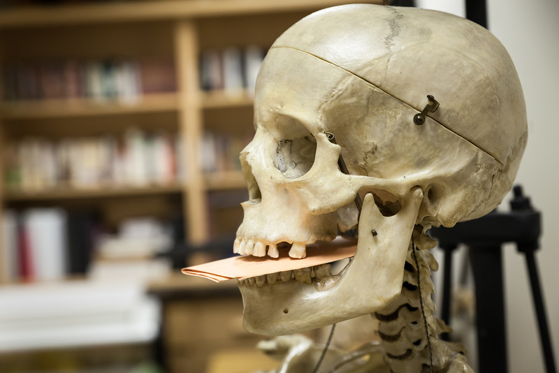 Peter Peregrine Classroom-11.jpg