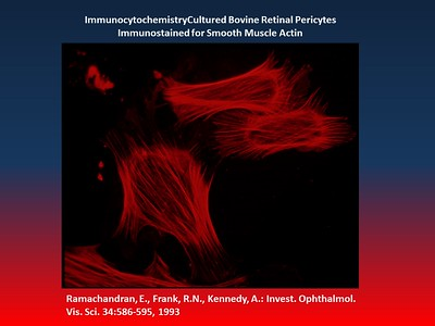 Photomicroscopy - RNFrank - 1/16/2018