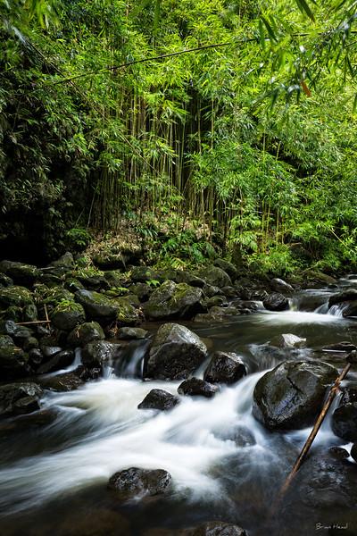 Hawaii Maui 2015-732-Edit-3-Edituntitled-sig.jpg