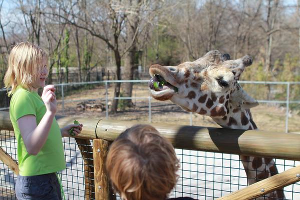 Memphis Zoo Spring 2013