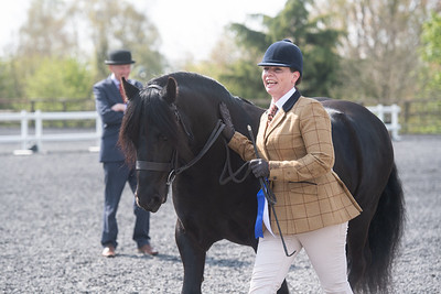 Class 03 - Geldings 4yrs and over