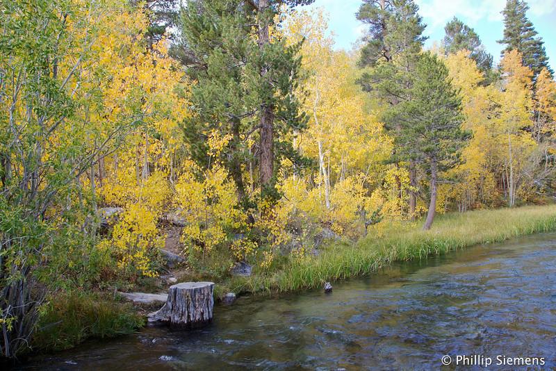 Bishop Creek just below Lake Sabrina