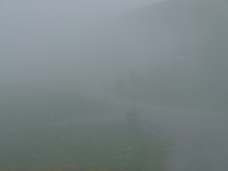 @RobAng 2013 / Bergspaziergang Hochybrig, Muotathal, Illgau, Kanton Schwyz, CHE, Schweiz, 1662 m ü/M, 2013/07/07 14:15:36