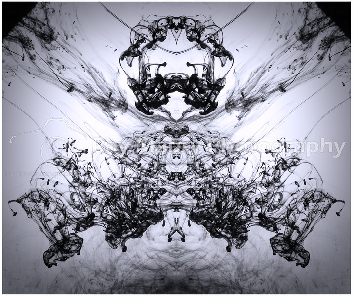 Ink in Motion 020