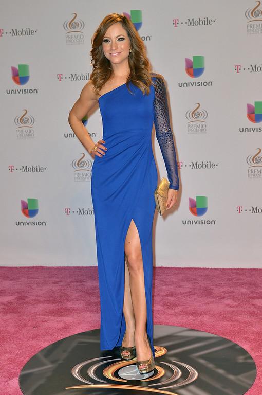 """. Satcha Pretto arrives at the 25th Anniversary Of Univision\'s \""""Premio Lo Nuestro A La Musica Latina\"""" on February 21, 2013 in Miami, Florida.  (Photo by Gustavo Caballero/Getty Images for Univision)"""