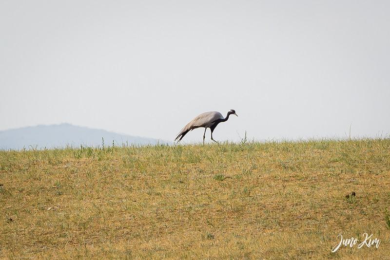 Kustei National Park__6109654-Juno Kim.jpg
