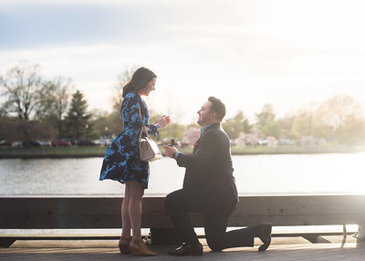 Proposal Favorites