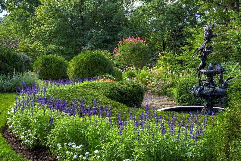 Garden 1, 270.jpg