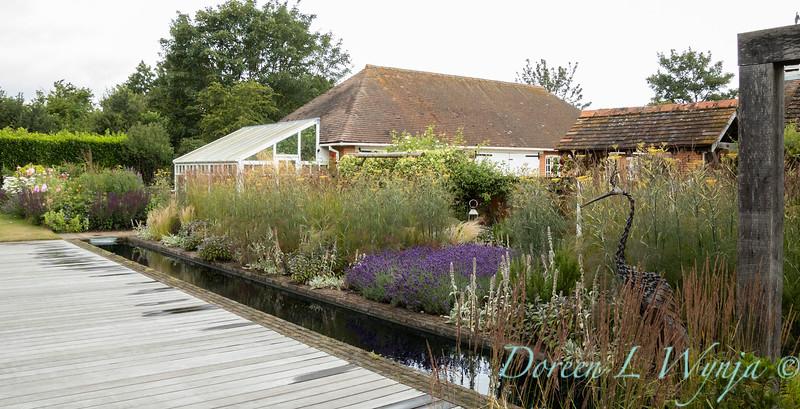 Beechleigh Garden - Jacky O'Leary garden designer_2983.jpg