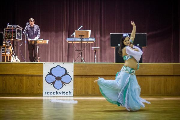 Rezekvítkovský ples 2013