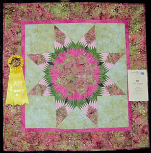 Small Pieced Category