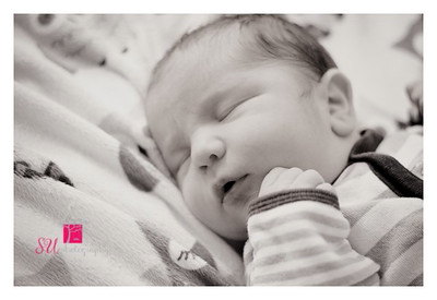 Charlie's Newborn Session 2014