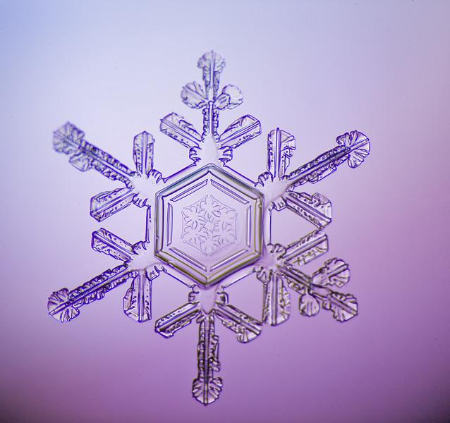 snowflake-0243-Edit.jpg