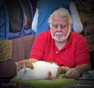 2016-01-16.....Skyway Cat Club of Tampa Bay Fl.