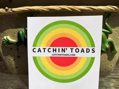 Catchin' Toads @ Lake Anne Plaza 4.8.17