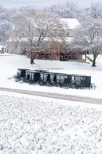 Snow Scenes November 27 2014