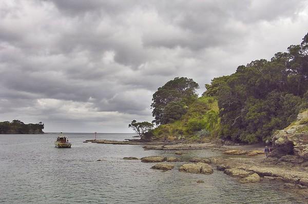 Leigh - North Island