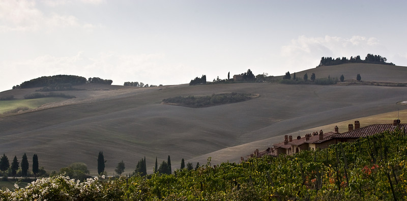 Tuscan countryside
