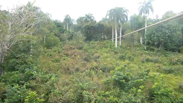 LA Ziplining in the DR