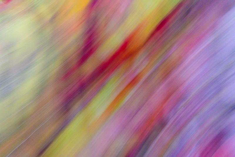 Movement: Linear