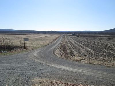Black Dirt Road In Chester