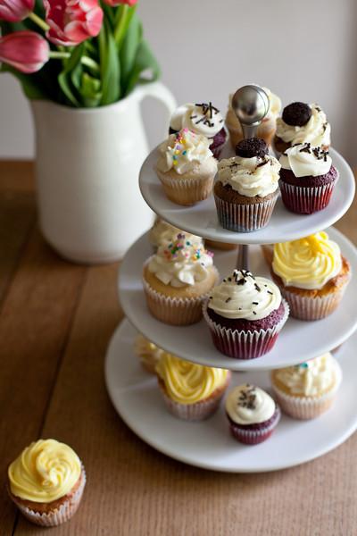 Cupcakes-001.jpg